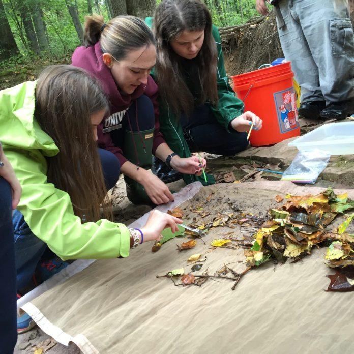 New Jersey Audubon and National Wildlife Federation Welcome The Newgrange School and Laurel School of Princeton to Eco-Schools USA
