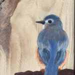 HomeFront BlueBird on Branch by Aileen D.