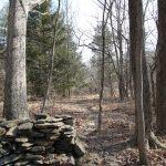 Cedar Ridge Stone Wall