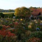 The gardens at Hummelo in the fall.