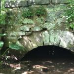 Cultural Landscapes of the Sourlands Rockhopper