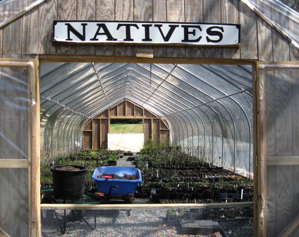 D&R Greenway announces native plant sale