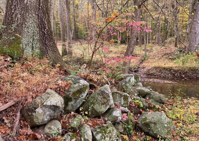 Newly preserved land will extend the Jacobs Creek Trail