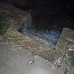 Sidewalk dropping to Broad Street_WoodyCarskyWilson