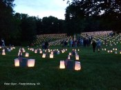 photo-9---Luminaria-early-e
