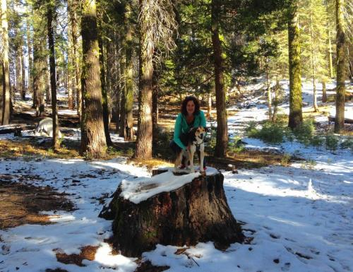 Parc National Yosemite, California