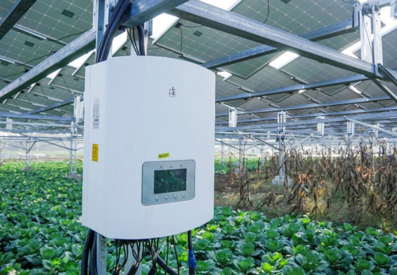 Solar Inverter Supplier Ginlong Reports 82% Jump in Revenue During Q3 2019