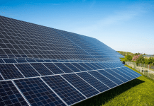 NTPC Floats Tender for 50 MW of Solar Projects in Jharkhand