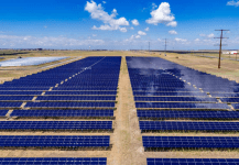 8 GW of Solar Projects Tendered in March Despite the Lockdown