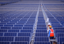Investment Firm KKR to Acquire 317 MW of Solar Assets from Shapoorji Pallonji