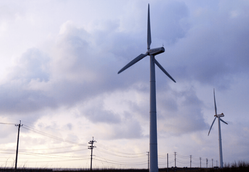 India's Lockdown Amid COVID-19 Hurts Wind Supply Chain Globally_ Report