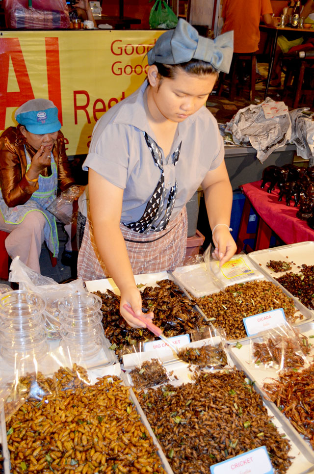 mercredie-blog-mode-voyage-thailande-marche-insectes