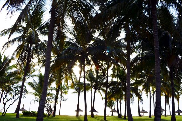 mercredie-blog-mode-voyage-ile-maurice-sun-resort-avis-conseils-tripadvisor-sugar-beach-hotel-guide-touristique-suite-manoir-nuit-plage