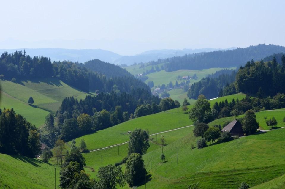 mercredie-blog-blogger-geneve-suisse-voyage-my-switzerland-grand-tour-roadtrip-europcar-accor-paysage-view-pre-prairie-vert