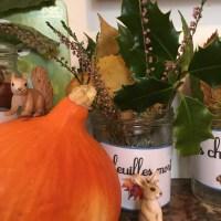 Table des saisons: automne