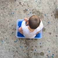 Baby activity: 12-18 mois (bac sensoriel et panier de découverte)
