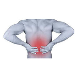 Advanced Spine And Sport:  Lower Back Pain - Get Out Of Pain With Dr. B's Program!