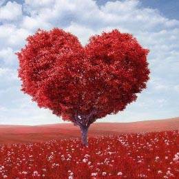 Reverend Kat ~ The Soulsearch:  Unconditional Love - An Altered State of Consciousness!