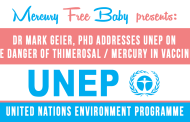 United Nations Environment Programme (UNEP) Testimonies on Mercury