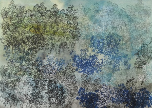 CHAMOMILE GARDEN IN LIGHT AND SHADE, 2017, silkscreen, graphite and watercolor on paper, 22″x 30″