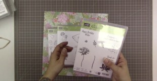Stampin' Up! Haul from April