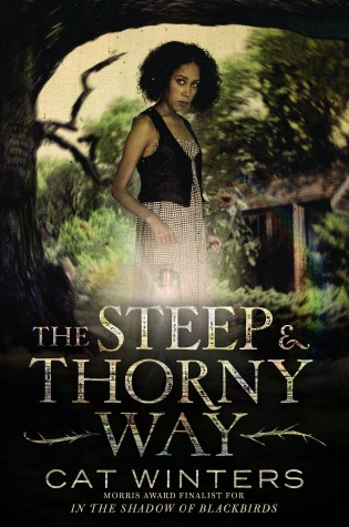 Blog Tour: The Steep and Thorny Way by Cat Winters Review + GIVEAWAY!