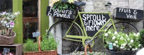The Sprout & Flower bicycle
