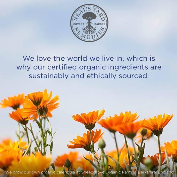 Organic-Ingredients-Image