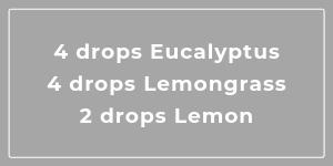 Lemon Grove essential oil blend for kitchen smells MeredithAmand.com
