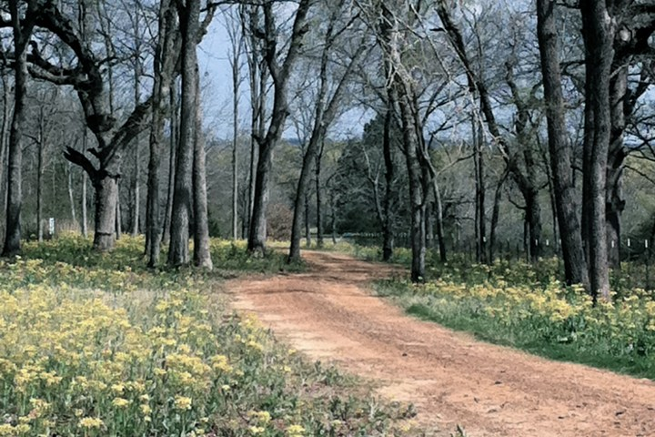 ranch path 2