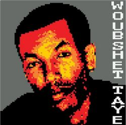 Woubshet Taye, a journalist from Ethiopia and prisoner of conscience   Woubshet Taye was the dep ...