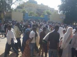 Families of those who were gunned down by the Federal Police gather outside Gondar University Ho ...