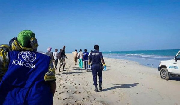 At least 20 people thrown to death into sea off Djibouti – IOM