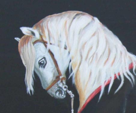 le cheval blanc détail