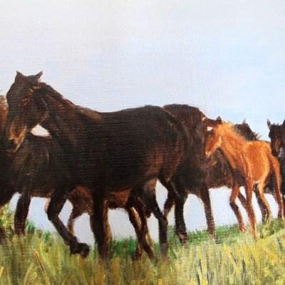 Harde de dix chevaux détail