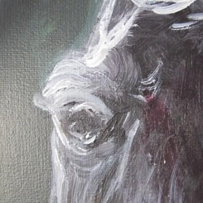 peinture cheval au nom de Tornado détail