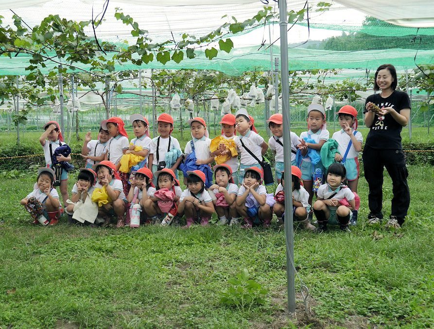 幼稚園児ブドウ狩り