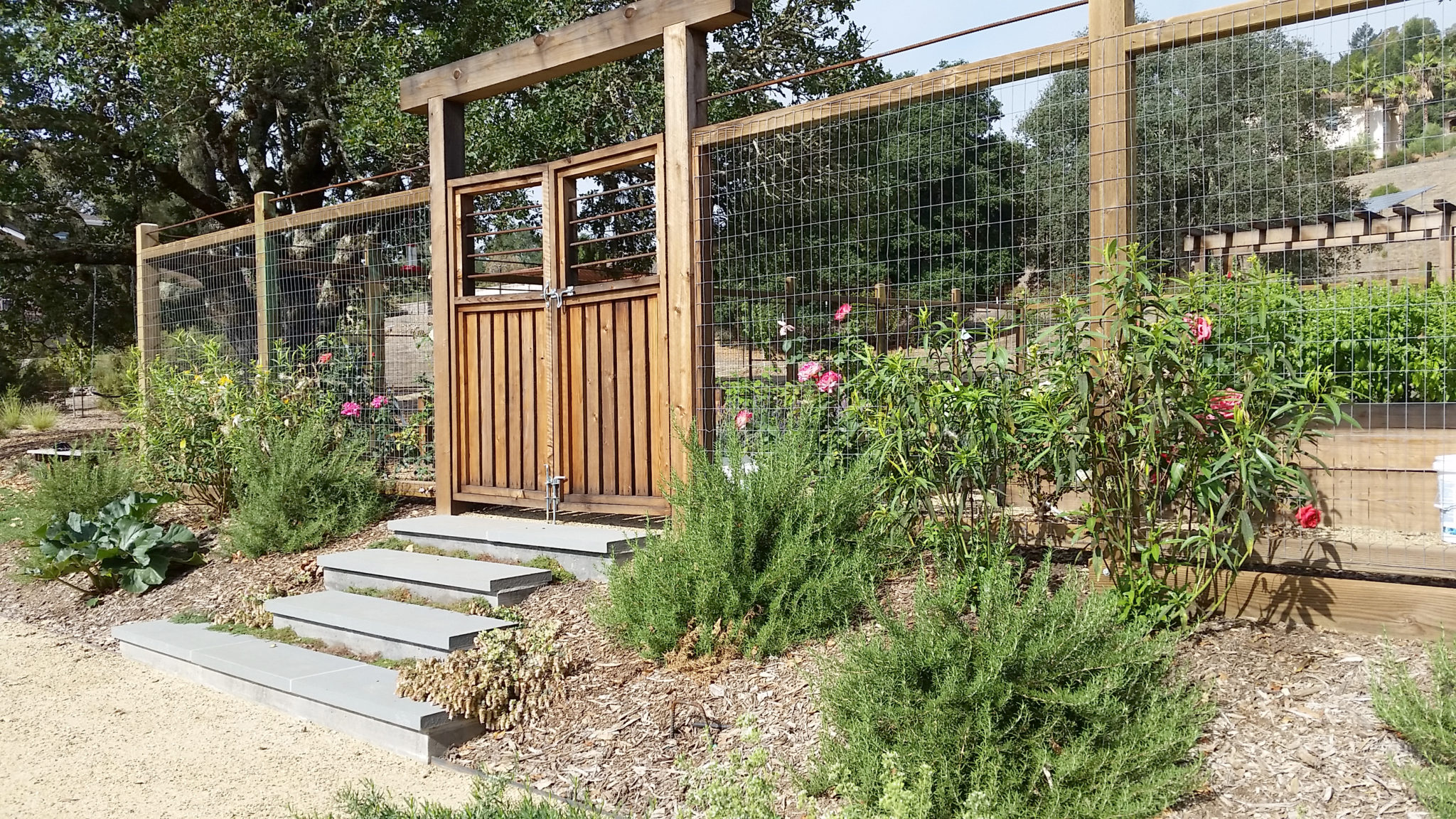veggie garden entry gate