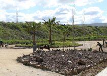 El Ayuntamiento de Mérida ofertará 117 puestos de trabajo a través del Plan Experiencia 2019