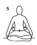 5-kriya-detox