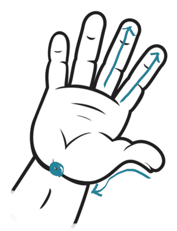 Tuina infantil insomnio - zonas y puntos en la mano