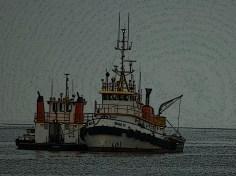 DSC_0204-66