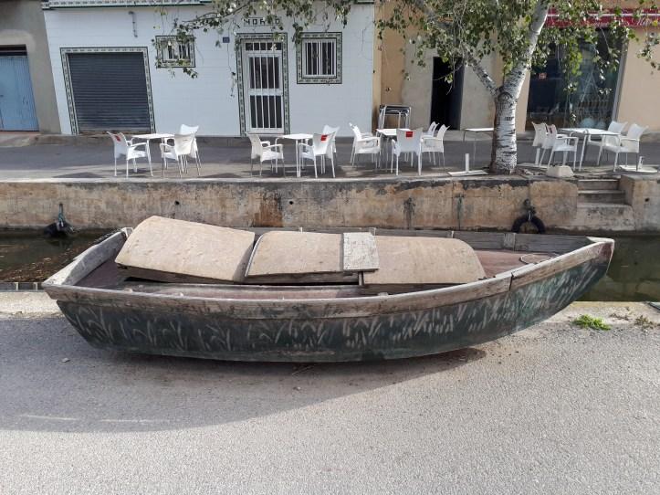 Parco dell'Albufera Valencia - 3.jpeg
