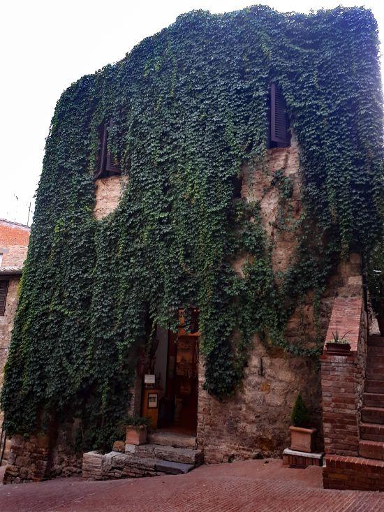 "MUSEO ""San Gimignano 1300"""