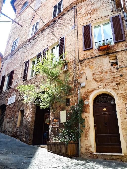Siena - 9.jpg