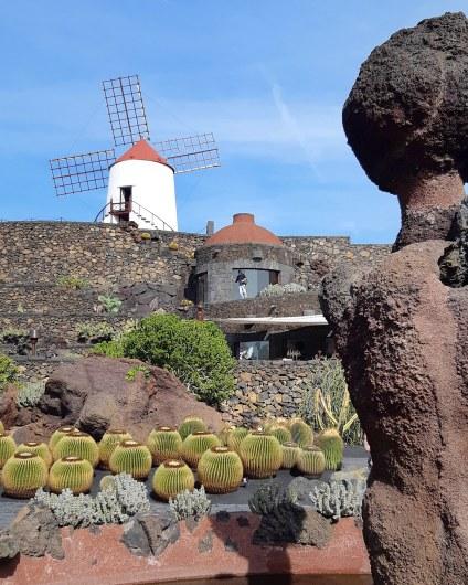 lanzarote _ jardin de cactus_26
