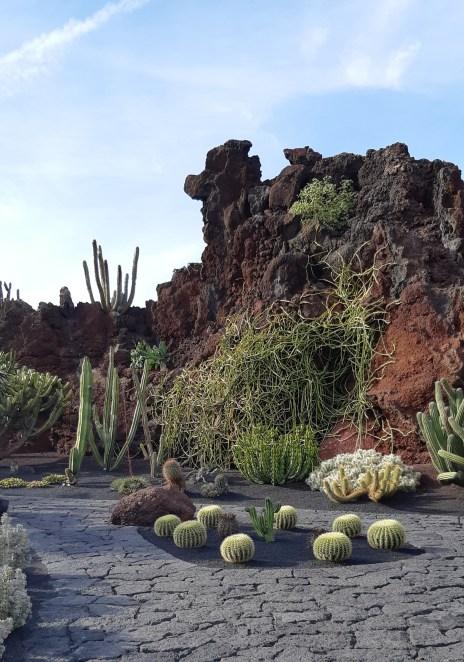 lanzarote-jardin-de-cactus-8.jpeg