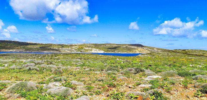 Blue Lagoon COMINO _ Malta
