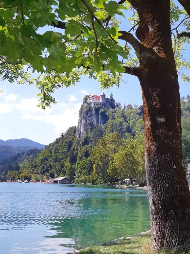 Lago di Bled - 27.jpeg