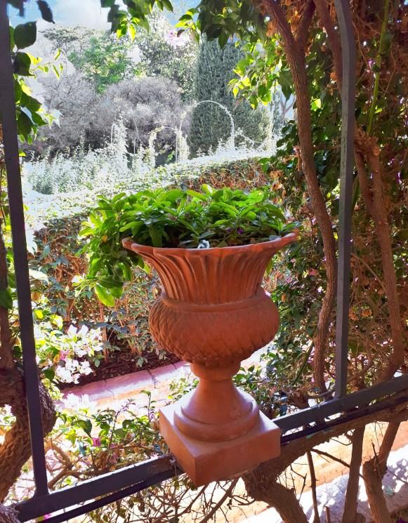 Giardini di Monforte - Valencia -13